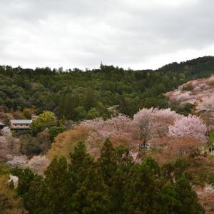 歴代天皇陵 遥かなる京都2