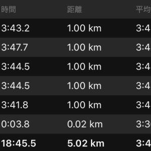 新潟シティ一週前最終セット練2日目(5km刺激走etc…)