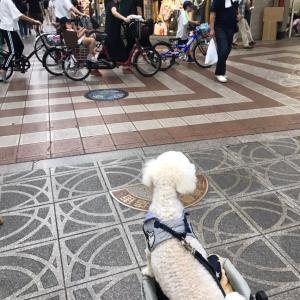 ヘアケア商品や化粧品は大阪商店街のアウトレットで!