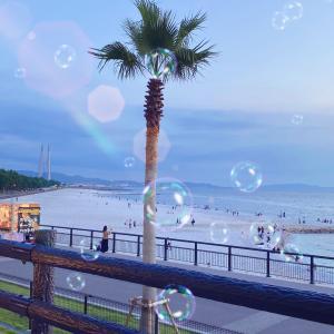 マーブルビーチを観ながらリゾート気分!