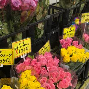 大阪花市場へ♡明日のワクチンに備えて♡