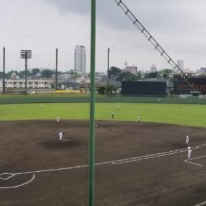 高校野球観戦と臨時総会と