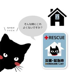 猫は家族です。大切な家族を守るための【ねこねこ防災】
