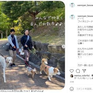 わんにゃんの飼い主さんに朗報!ペット防災の希望の光、德田竜之介先生が熊本市と同伴避難所協定!