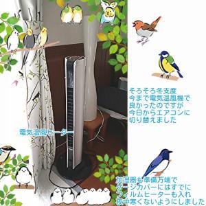 本格的に鳥たちの冬支度