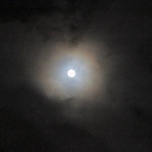 8年ぶりな中秋の名月が満月に、光環も❣️