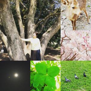 4月~スピリチュアル瞑想教室大阪・お申込み受付中
