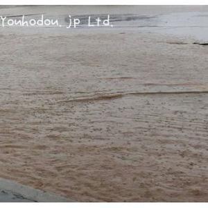 また、床上浸水です