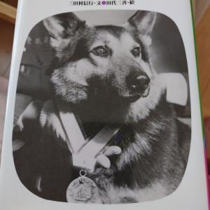 警察犬アルフ号