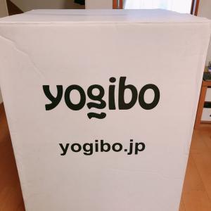 待ってました!ようやく届いたよのYogibo