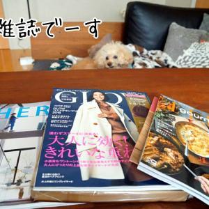 付録と特集目当てで買った雑誌たち