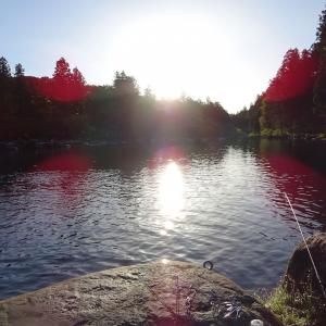 発光路の森フィッシングエリア 〜 激渋3号池にリベンジなるか?