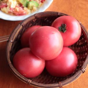 岐阜県産夏秋トマトとアボカドのふんわりたまご炒め【レシピ】岐阜クッキングアンバサダー