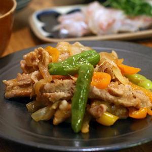 豚の生姜焼きと長崎のねこ
