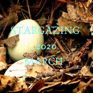 今月の空模様2020年3月