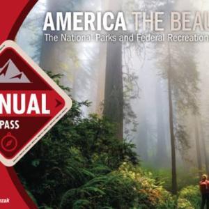 アメリカ国立公園年間パスとは? ナショナルパーク巡りに必須のお得なパスの使い方