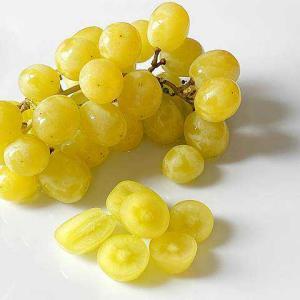 コットンキャンディグレープ わたあめが思い浮かぶ衝撃の甘さ アメリカの季節限定人気ブドウ!
