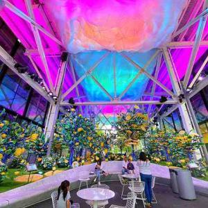 Citrovia ニューヨーク マンハッタンウエストにレモンの森 幻想的で楽しいパブリックスペース登場!