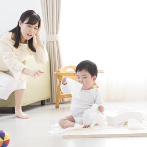 赤ちゃんの菌活