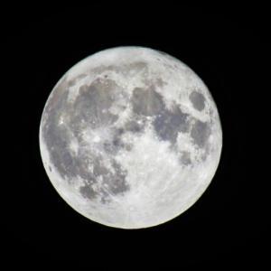 中秋の名月を撮る!
