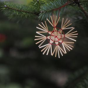 冬の光と影  クリスマスに寄せて