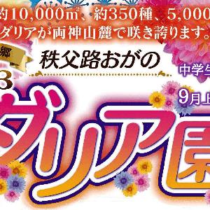 【秩父花だより】9/1(火)より、秩父郡小鹿野町「両神山麓花の郷 ダリア園」が開園致します