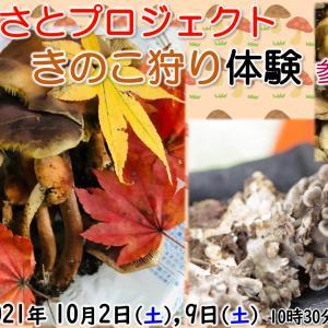 【栃本ふるさとプロジェクト】10/2,9開催 きのこ狩り&きのこ料理 参加者募集のお知らせです