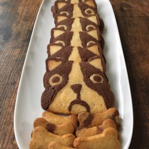 アイスボックスぶんクッキー