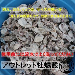 アウトレット牡蠣殻…とは
