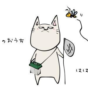 世界猫の日☆World Cat Day
