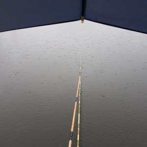 雨でも釣り