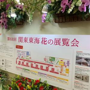 サンシャインシティ、花の展覧会