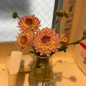 今月の花〜2021年9月①〜の巻