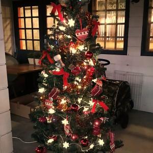クリスマスツリーがお出迎え♪