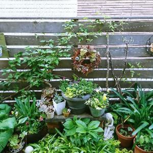 お庭のフォーカルポイント