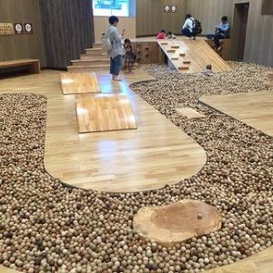 木製の屋内遊技場!?立川の創造冒険レポ