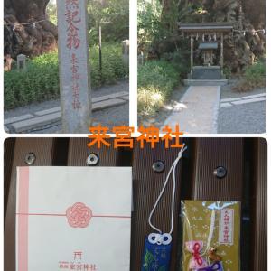来宮神社(*ˊ꒳ˋ*)ディズニーストア。不眠( ´ ཫ ` )