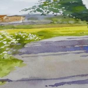 【来春 1月2月大阪水彩講座受付】2019年のスタートはやっぱり風景画のグリーンで描き初め?!2月の「花講座」も同時受付