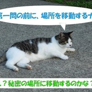 オイラは猫スパイseason3(任務その1の②)