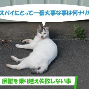 オイラは猫スパイSeason2(任務その3の③)