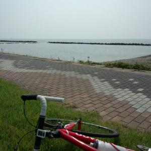 新潟は自然がいっぱい(*´∀`)