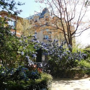 パリ 公園に咲く夢のような花 美しき思い出で免疫力を上げる