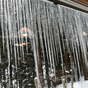 白馬岩岳でスキーとお酒 其の弐