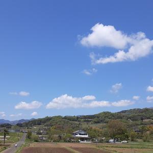 田原ふるさと公園からのお知らせ