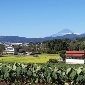 ダイヤモンド富士の撮影