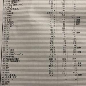 【今見ると】緊急入院した時の血液検査の結果 の巻【すごい・・・!】