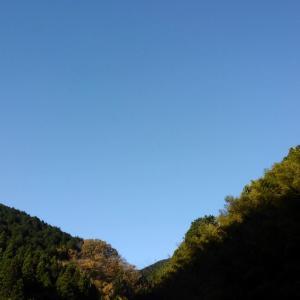 陣馬山~影信山~小仏城山~高尾山