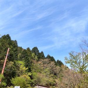 25日 ヤビツ峠〜大山