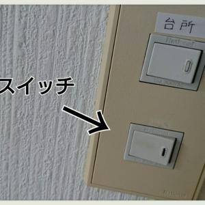 インフル &【続編】謎のスイッチの正体