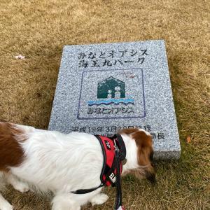 寒ブリを求めて富山へ〜海王丸パーク、ひみ番屋街
